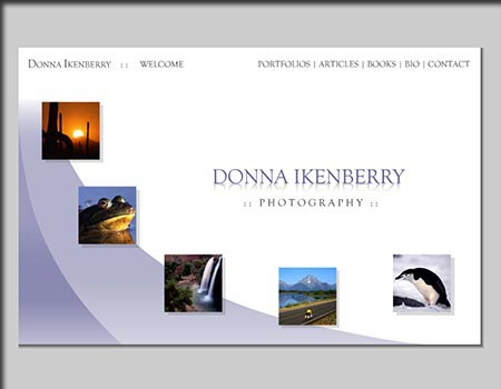 Donna Ikenberry website